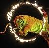 Цирки в Новоселово